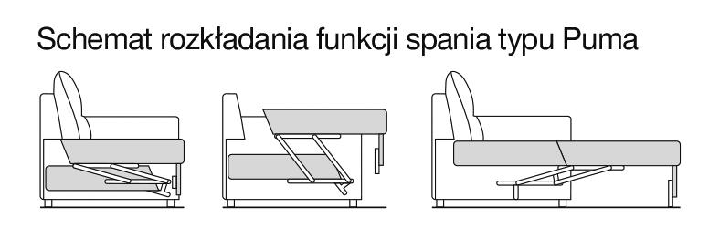 Schemat rozkładania funkcji spania typu Puma